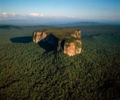 Aerial image of Ayangaik mountain, Upper Mazaruni District, Guyana. Photo by Corbis Images