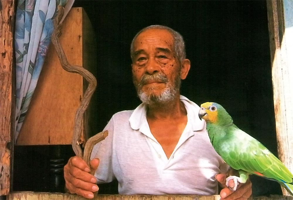 Javien Caprietta, 86-year-old healer, pictured with Pweda root and his pet parrot. Photograph by Mark Meredith