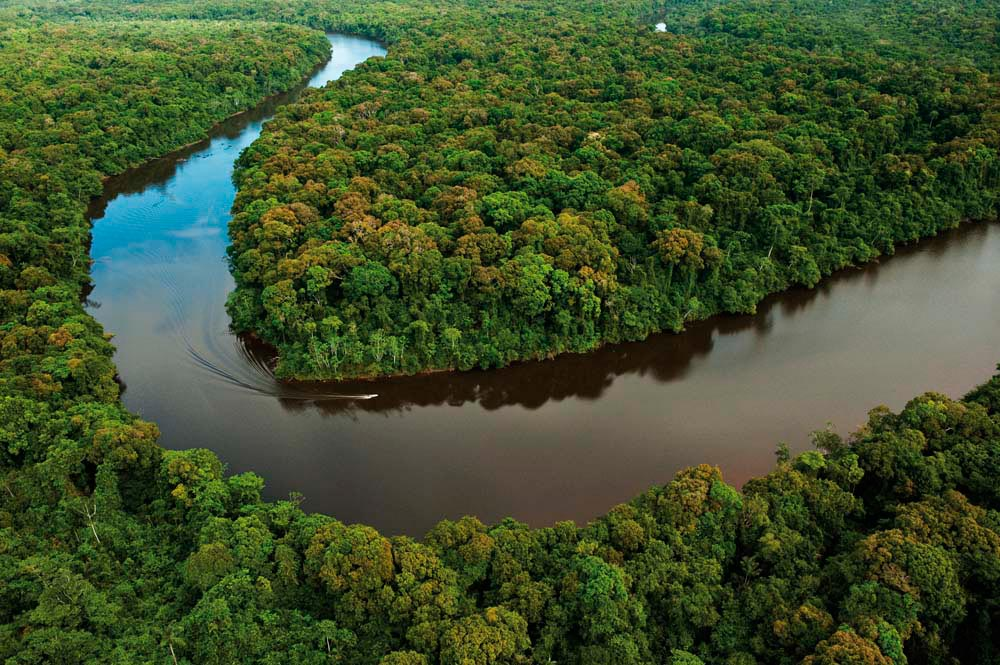 The Essequibo River meanders through the Iwokrama reserve in central Guyana. Photo by Pete Oxford