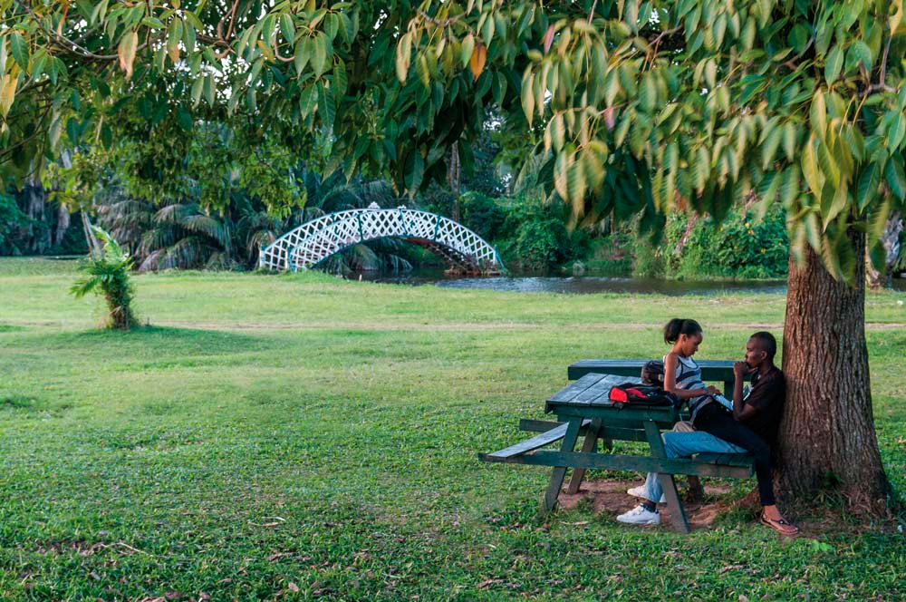 "A quiet moment in the Botanical Gardens, near the ""kissing bridge"". Photo by Nikhil Ramkarran"