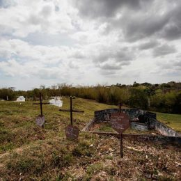 A graveyard and old headstones: a typical scene around one of the many Baptist churches on the hills of the company villages. Photo by Marlon Rouse