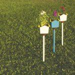 Marlon Darbeau — design that blooms