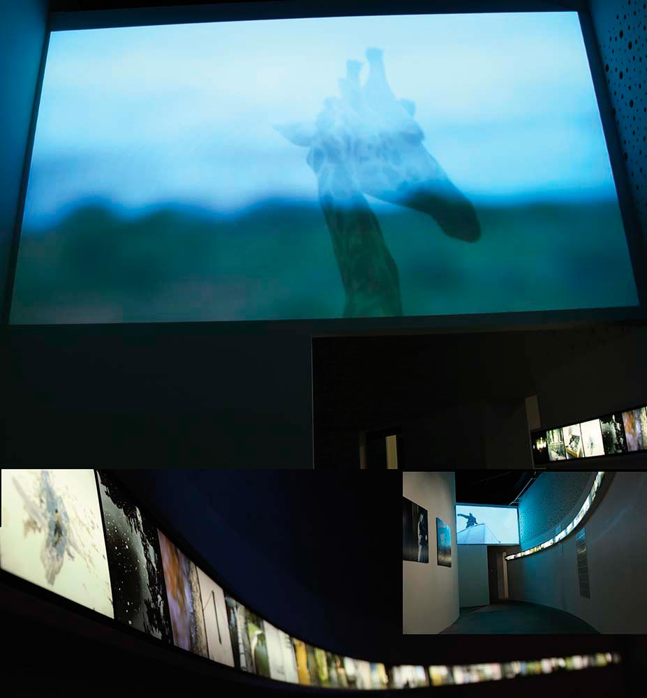 Installation view of Too Long Are Our Memories + Borders, a collabration between Michelle Eistrup and James Muriuki (2010; video, 9 mins). Courtesy Michelle Eistrup