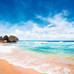 Bathsheba, on Barbados's east coast. ©iStock.com/Tomml