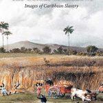 Caribbean Bookshelf (January/February 2017) | Book Reviews