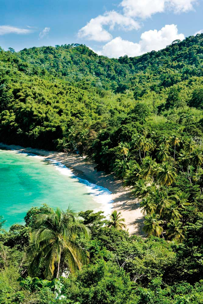 Don't underestimate the recuperative power of Tobago's gorgeous beaches. Photo by PHB.cz (Richard Semik) / Shutterstock.com