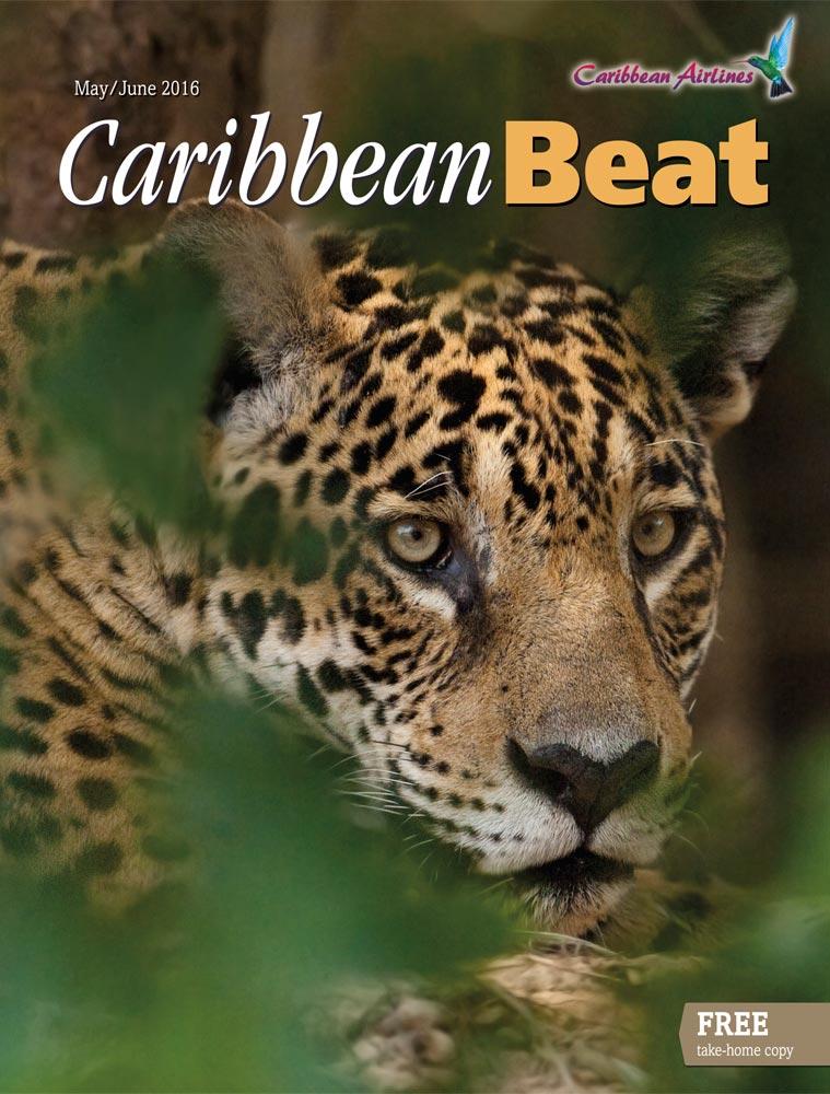 139 • Jaguar, May/June 2016. Photo by Pete Oxford