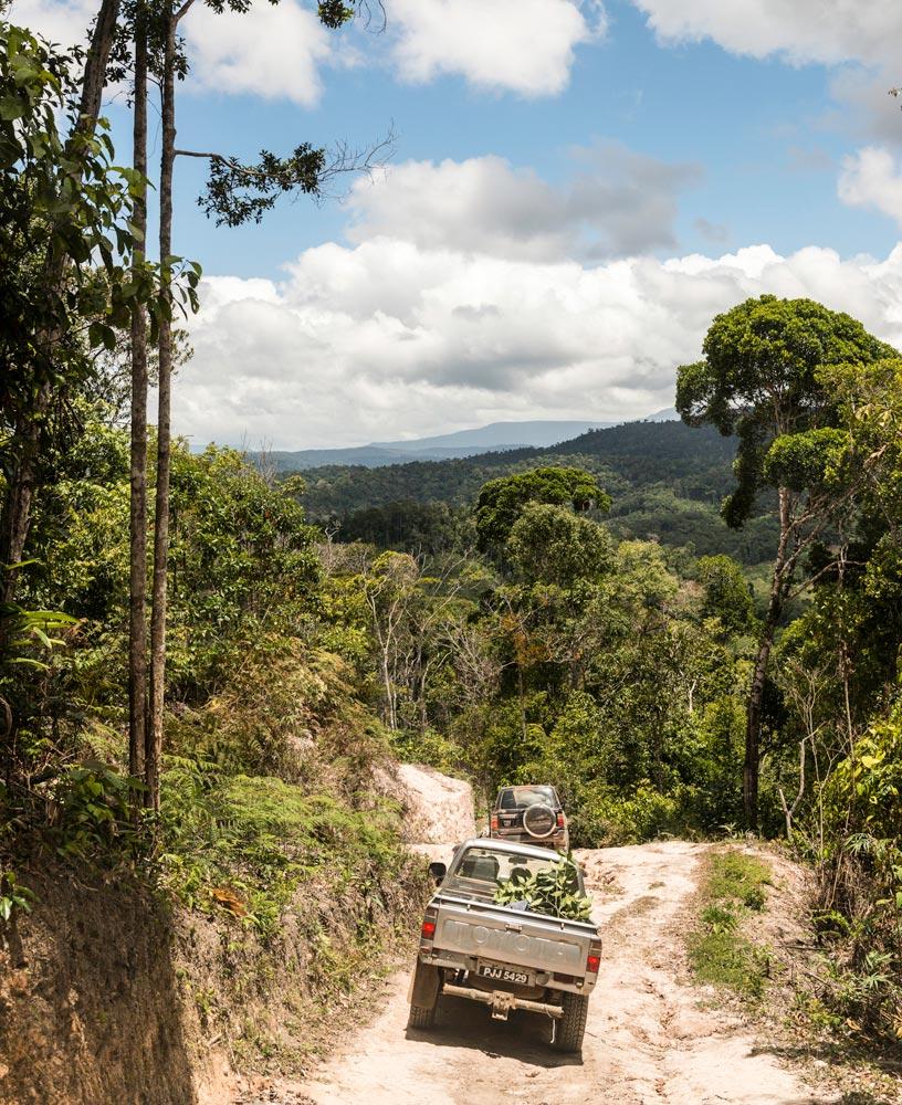 Heading into Guyana's Pakaraima Mountains. Photo by Nikhil Ramkarran