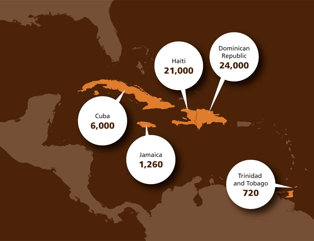 Caribbean coffee exports in metric tons, 2015/16. Source: International Coffee Organisation