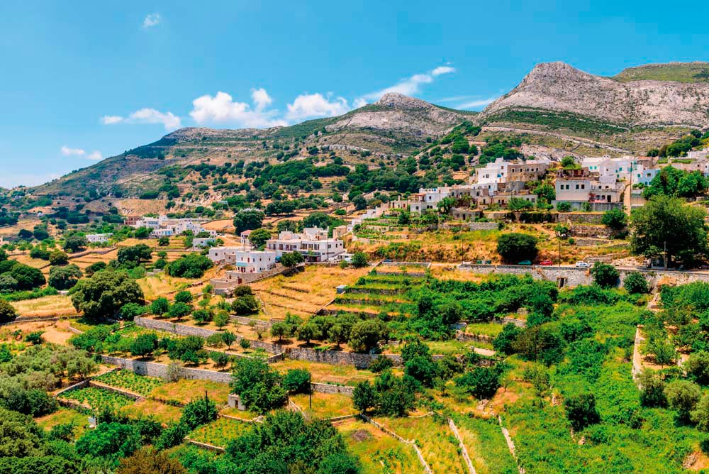 The slopes of Naxos are covered with terraced fields and orchards. Photo by Randre/Shutterstock.com