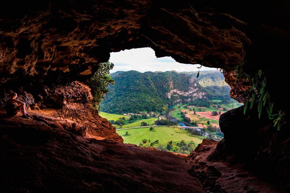 Photo by Max Sawa/Shutterstock.com