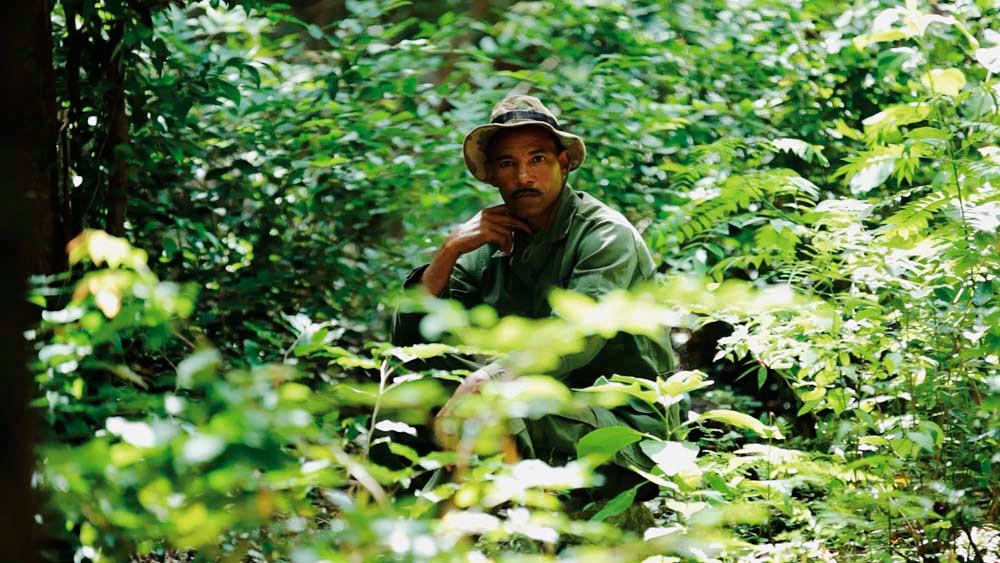 Green Screen: The Environmental Film Festival