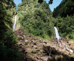 Dominica's Trafalgar Falls, a popular attraction for visitors, before Hurricane Maria. Photo by Paul Crask