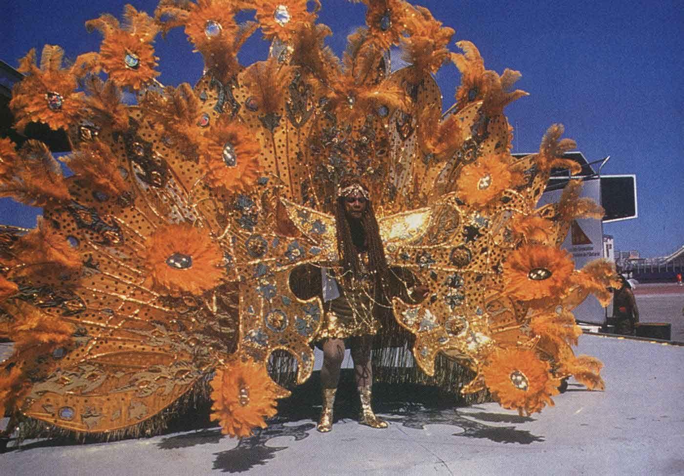 Trinidad Carnival at Toronto's Caribana. Photograph by Robert D Watkins Jr.