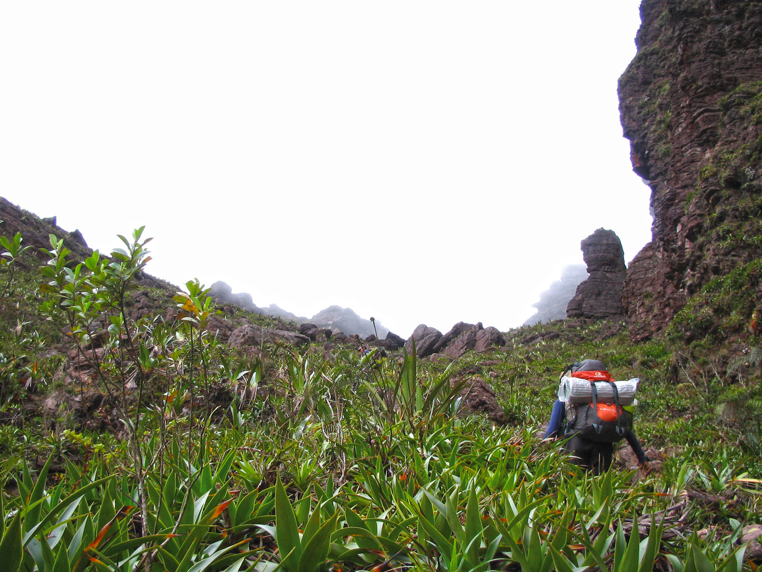 Olivia climbing the last stretch of the Roraima 'ramp', towards the 'gate'. Photograph by Nicholas Laughlin