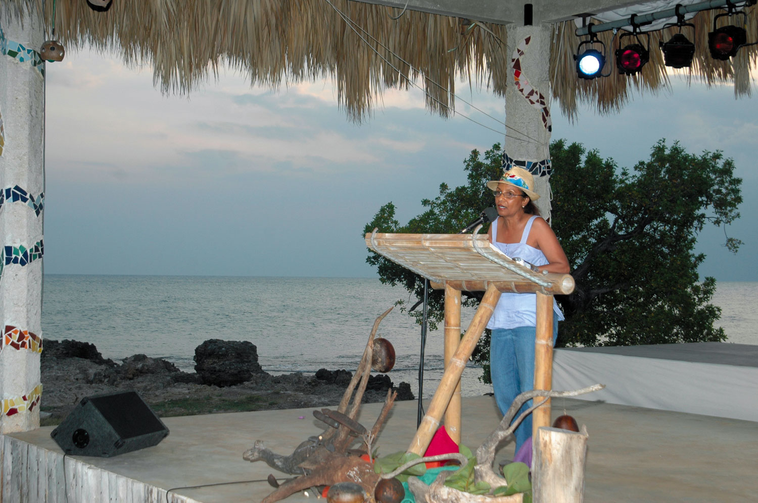 Elizabeth Nunez reads at Calabash 2006. Photograph courtesy the Calabash International Literary Festival