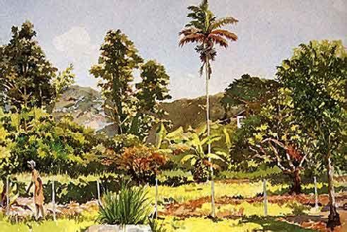 La Pastora Road (Santa Cruz, Trinidad, 1992): Walcott started out as a painter & poet, producing delicate water-colours. Courtesy Derek Walcott