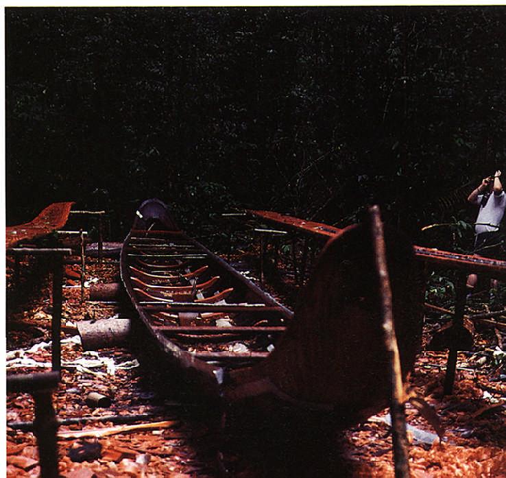 A traditional Guianese dugout canoe