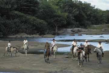 Cattleworks on the riverbank. Photograph by South America Team/Foto Natura
