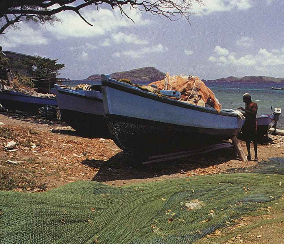 Fishing boats at Paget Farm, Bequia. Photograph by Chris Huxley